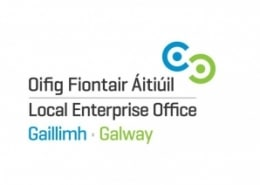 Local Enterprise Office Galway in Support with Galway Artist Pat Flannery.jepg