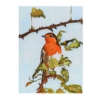 An Original Painting of an Irish Robin Redbreast Perched on a Branch by Galway Artist Pat Flannery.jpeg