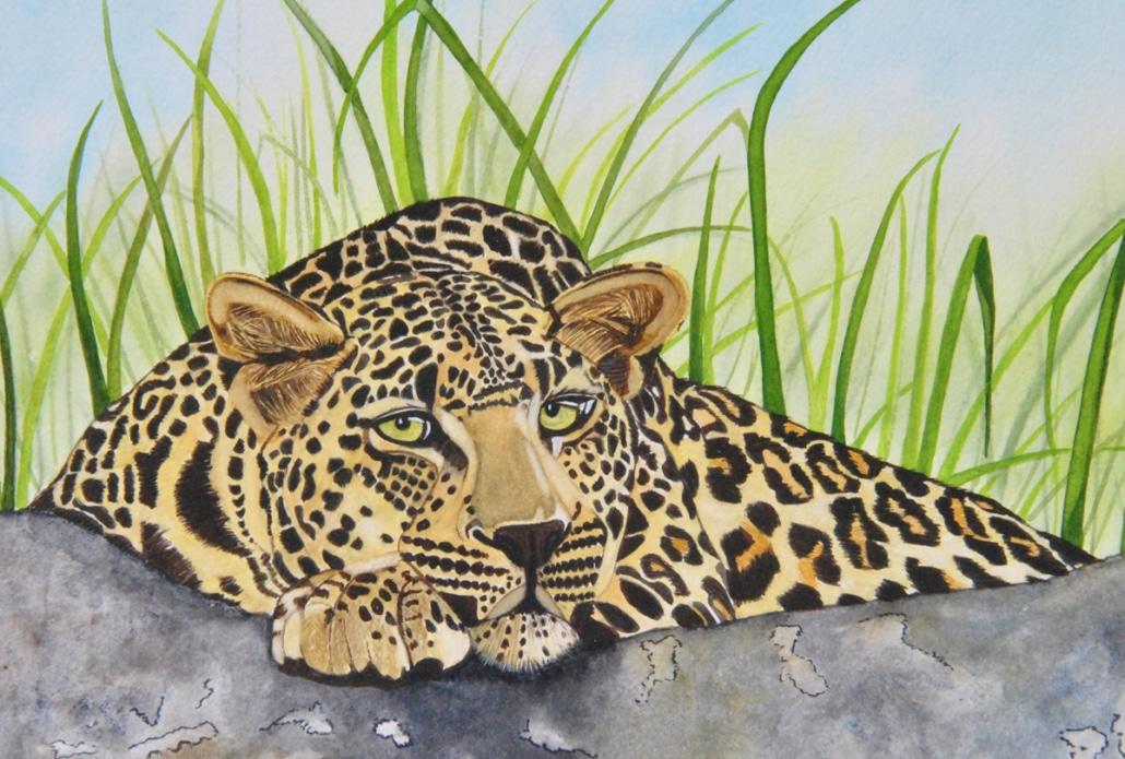 An Original Watercolour Painting of the Fierce Leopard by Galway Artist Pat Flannery.jpeg