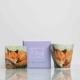Mug and Coaster Set with Painting of an Irish Fox Homeware Gifts.jpeg