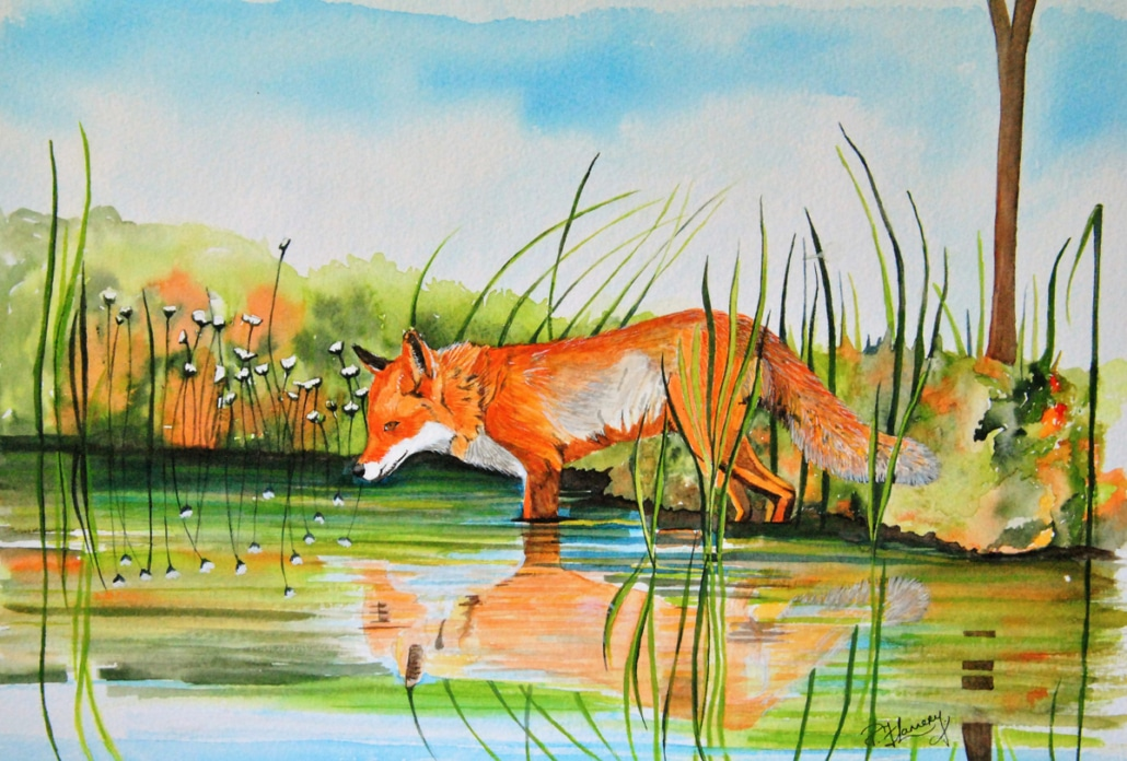 An Original Painting of a Wild Fox and its Reflection on the Lake of by Galway Artist Pat Flannery.jpeg