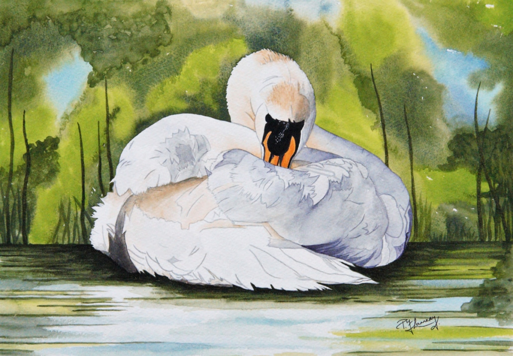 An Original Painting of a Sawn Resting a while of by Galway Artist Pat Flannery.jpeg