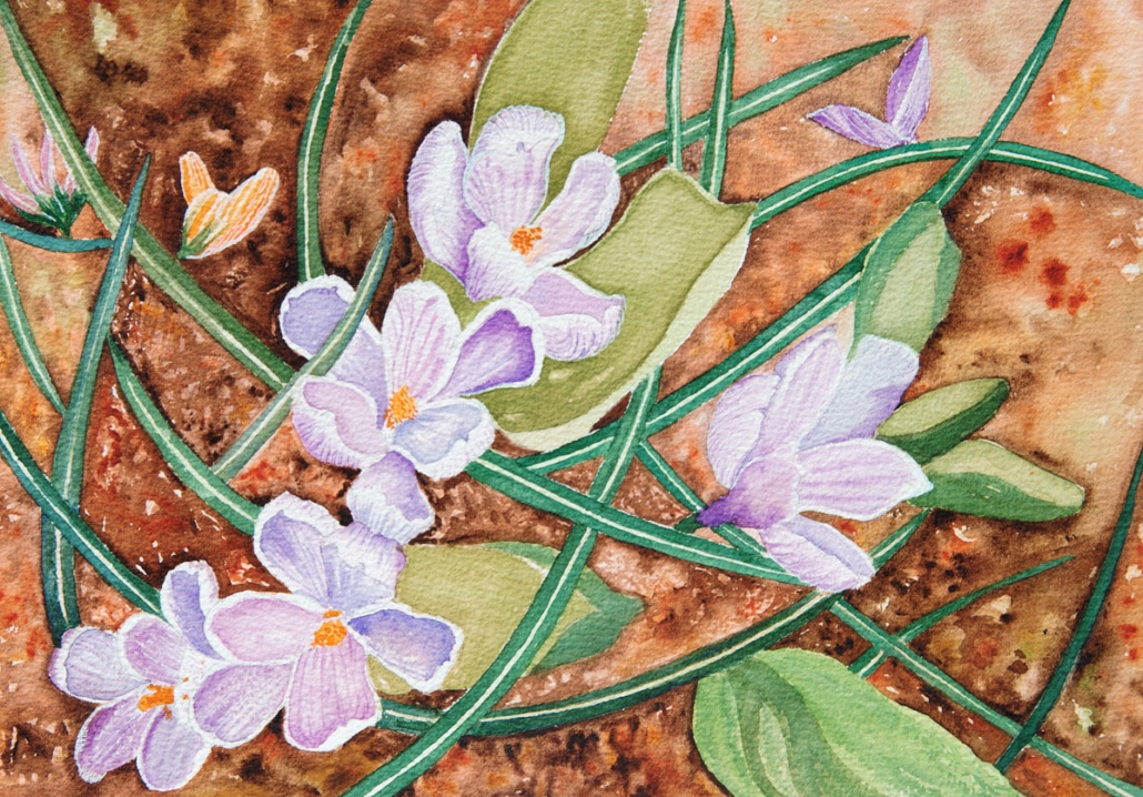 An Original Watercolour Painting of purple spring bulbs breaking through the ground by Galway Artist Pat Flannery.jpeg