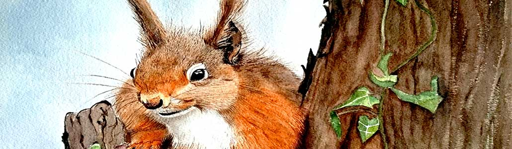 An Original Painting of a Cheekie Chappie Squirrel in Watercolour by Galway Artist Pat Flannery.jpeg
