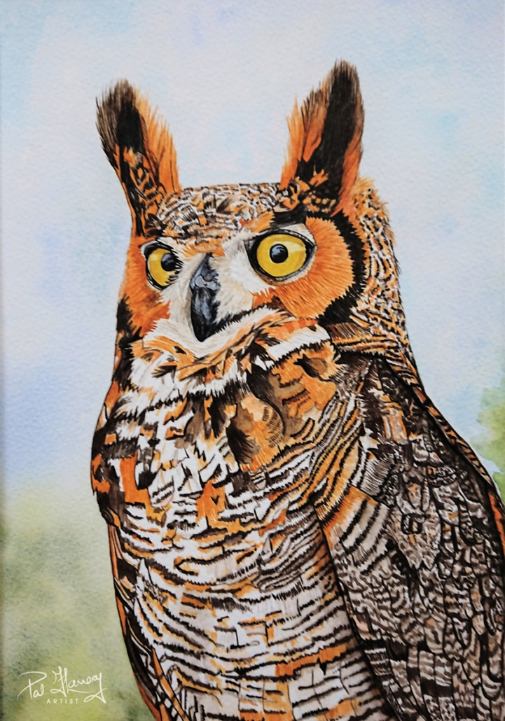 An Original Watercolour Painting of an Owl Standing Proud by Galway Artist Pat Flannery.jpeg