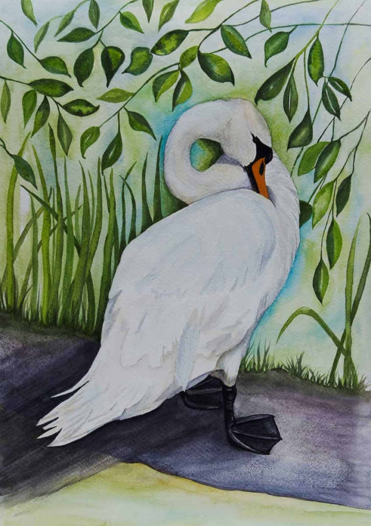 An Original Watercolour Painting of a Serene Swan Standing by Galway Artist Pat Flannery.jpeg