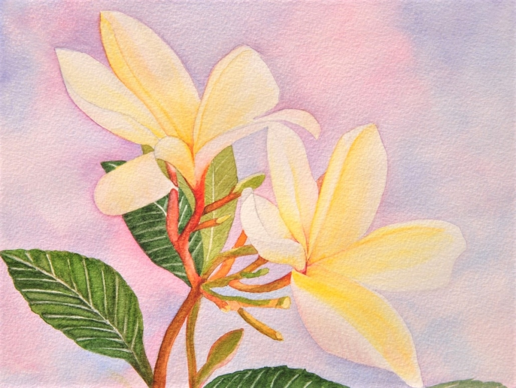 An Original Watercolour Painting of Beautiful Flowers in Yellow by Galway Artist Pat Flannery.jpeg