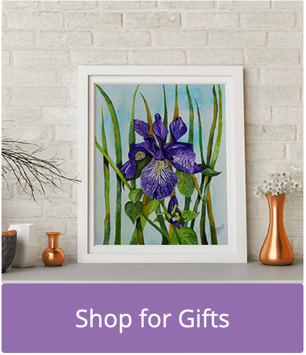 Buy an Original Painting of Iris Flower in Watercolour by Galway Artist Pat Flanery.jpeg